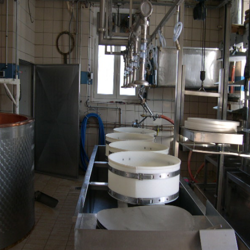 Moulding system for Comté cheese
