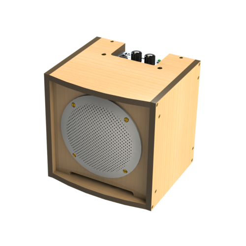 Amp for instruments - T' CUBE - natural - No' Madd - solar speaker
