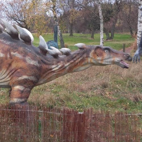 catégorie(s) :  - Kentrosaure