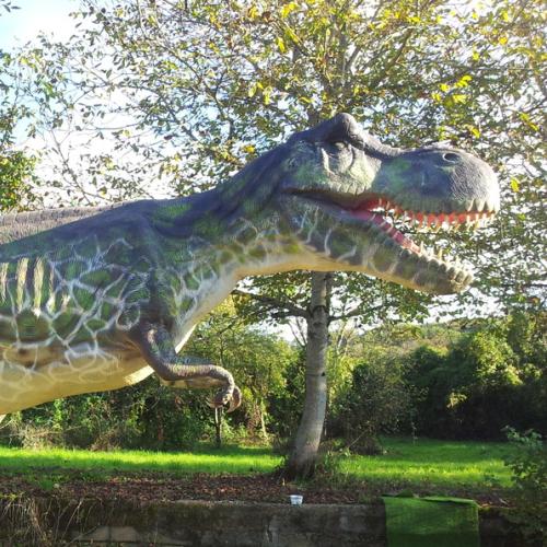 catégorie(s) :  - Tyrannosaure