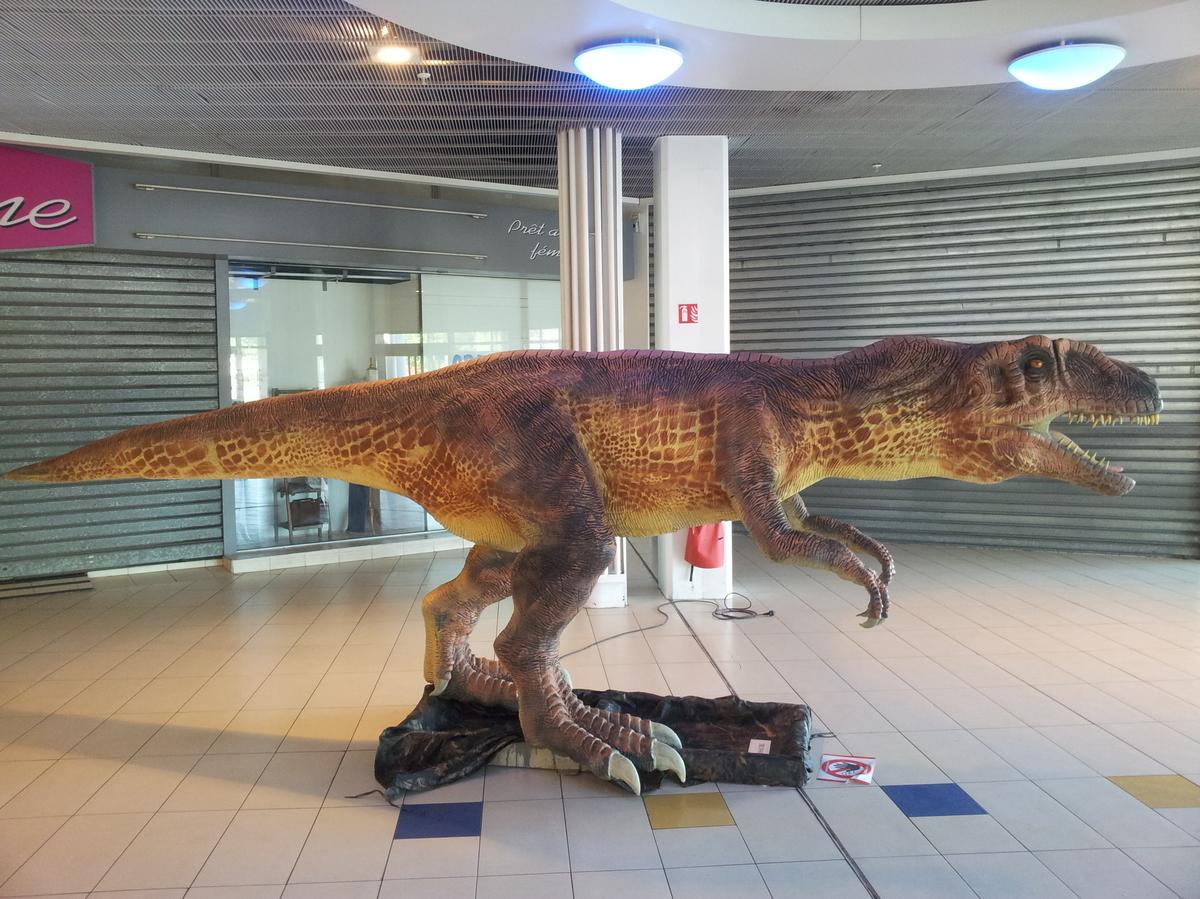 Albertosaure