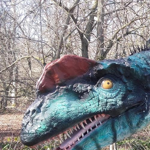 catégorie(s) : Dinosaures World - Dilophosaure animatro